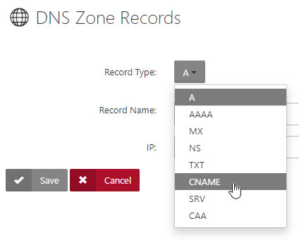 DNS Zone Records